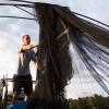 Bird netting - <p></p>