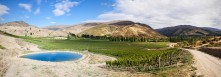 Domain Road Vineyard - Recent success - <p></p>